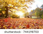 colorful autumn forest.... | Shutterstock . vector #744198703