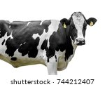 cow isolated on white | Shutterstock . vector #744212407