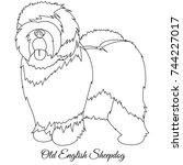 old english sheepdog outline... | Shutterstock .eps vector #744227017