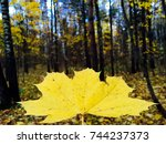 ecology concept. eco concept.... | Shutterstock . vector #744237373