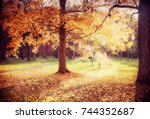 beautiful autumn alley... | Shutterstock . vector #744352687