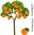 orange tree with green leaves... | Shutterstock .eps vector #744398377
