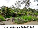 canberra  australia  12 dec... | Shutterstock . vector #744419467