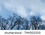 natural scenery view of tree... | Shutterstock . vector #744502333