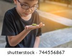 image of cute young asian boy... | Shutterstock . vector #744556867