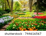 colourful tulips flowerbeds and ... | Shutterstock . vector #744616567