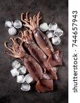 fresh raw whole squid on a dark ... | Shutterstock . vector #744657943