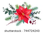 christmas bouquet arranged from ... | Shutterstock .eps vector #744724243