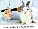 Small photo of Cosmetics test on rabbit animal, Scientist or pharmacist do research chemical ingredients test on animal in laboratory, Cruelty free and stop animal abuse concept.