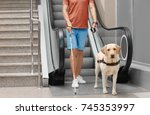 blind man with guide dog near... | Shutterstock . vector #745353997