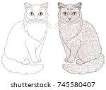 cat doodle and line cartoon cat ... | Shutterstock .eps vector #745580407
