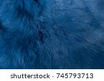 Background Texture Of Fur....