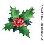 watercolor christmas plant.   Shutterstock . vector #745819477