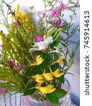 beautiful yellow and white... | Shutterstock . vector #745914613