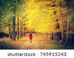 pathway in the bright autumn... | Shutterstock . vector #745915243