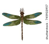 color dragonfly hand drawn.... | Shutterstock . vector #745933957