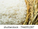 Small photo of Long grain of rice and rice