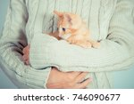 Stock photo cute little red kitten is sitting on his hands kitten in the hands red haired kitten soft tone 746090677