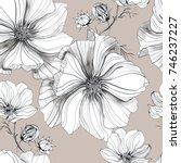 Stock photo botanical drawing flowers cosmos pattern 746237227