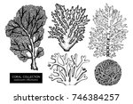 vector collection of hand drawn ... | Shutterstock .eps vector #746384257