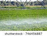 field irrigation using the... | Shutterstock . vector #746456887
