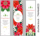 set of three vertical banners.... | Shutterstock .eps vector #746466823