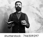 bearded man  long beard. brutal ... | Shutterstock . vector #746509297