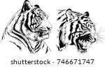 set of vector drawings on the... | Shutterstock .eps vector #746671747