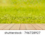 Small photo of Wood floor on blurred artificial grass field bokeh background,Well use as montage or show display purr products.