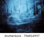 Spooky Mystical Foggy Forest...