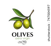 vector hand drawn olives icon... | Shutterstock .eps vector #747004597