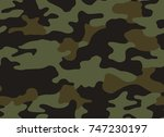 camouflage pattern background... | Shutterstock .eps vector #747230197