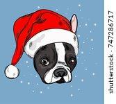 portrait of cute french bulldog ... | Shutterstock .eps vector #747286717