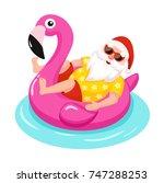 Santa Claus With Flamingo...