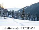 beautiful winter landscape in...   Shutterstock . vector #747303613