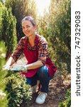 happy senior woman gardener... | Shutterstock . vector #747329083