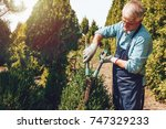 senior gardener cutting a tree... | Shutterstock . vector #747329233