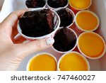 chocolate cake  woman holding a ... | Shutterstock . vector #747460027