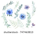 watercolor floral set. hand... | Shutterstock . vector #747463813
