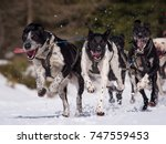 sled dog race | Shutterstock . vector #747559453