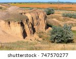 Country Summer Steppe Veld...