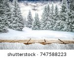a table full of snowflakes with ... | Shutterstock . vector #747588223