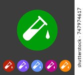 test tube glass icon flat web...   Shutterstock . vector #747974617
