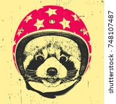 Portrait Of Red Panda With...
