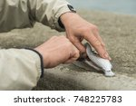 fisherman hollowing out a... | Shutterstock . vector #748225783