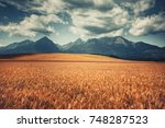 harvested wheat field under... | Shutterstock . vector #748287523