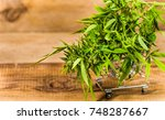 delivery of cannabis medicinal. ... | Shutterstock . vector #748287667