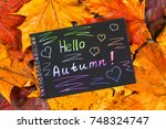 a frame of yellow and orange... | Shutterstock . vector #748324747