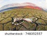 dry land of the reservoir in...   Shutterstock . vector #748352557