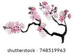 hand drawn cherry branches with ... | Shutterstock .eps vector #748519963